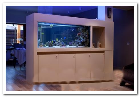 деление на зоны аквариумом